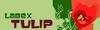 Logo_Tulip_102.png