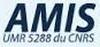 logo_amis_100.jpg
